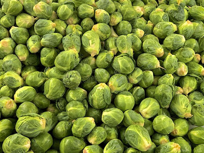 A Mountain of Brussel Sprouts royalty free stock photography