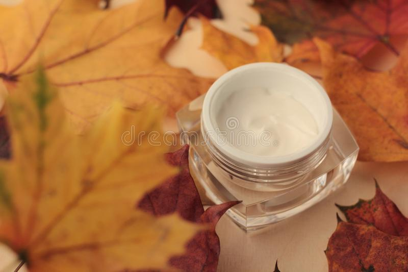 Closeup of moisturiser with maple leaves royalty free stock photos