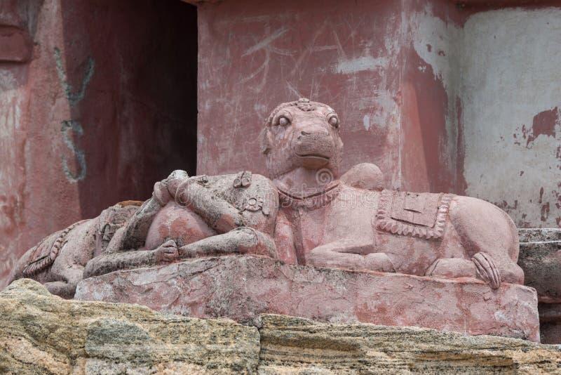 Closeup of nandi at abandoned temple in Dindigul. Dindigul, India - October 23, 2013: Closeup of damaged Nandi on Vimanam at the abandoned ruinous Shiva Temple royalty free stock images