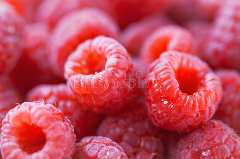 Closeup of natural tasty colourful raspberry with copy space stock photos