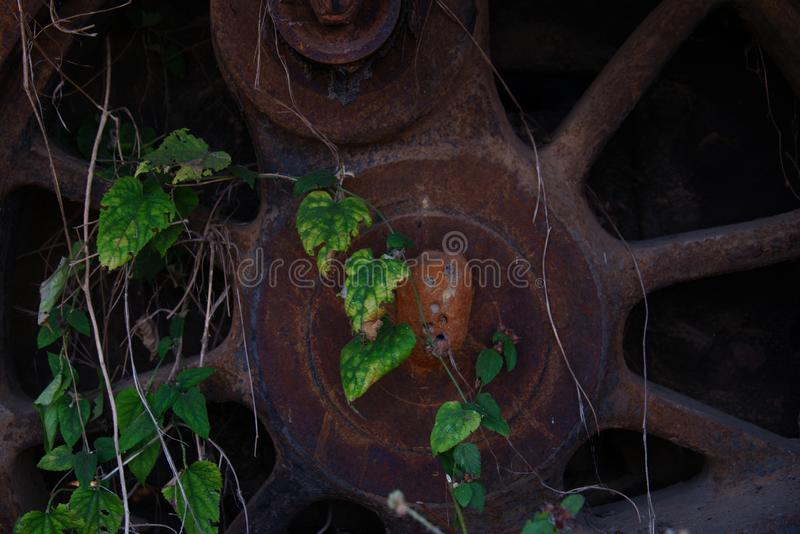 Closeup of old locomotive wheel with wasps nest and foliage growth royalty free stock photo