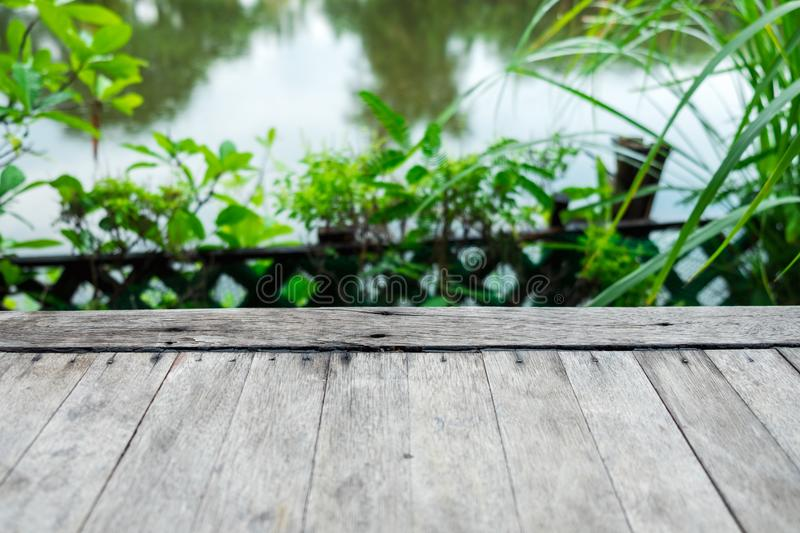 closeup. old wood floor among nature with tree and river are background in the morning. image for natural, plant, scenery, travel royalty free stock photography