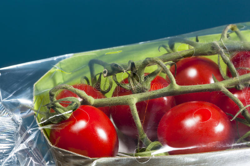 Closeup of packaged tomatoes royalty free stock image