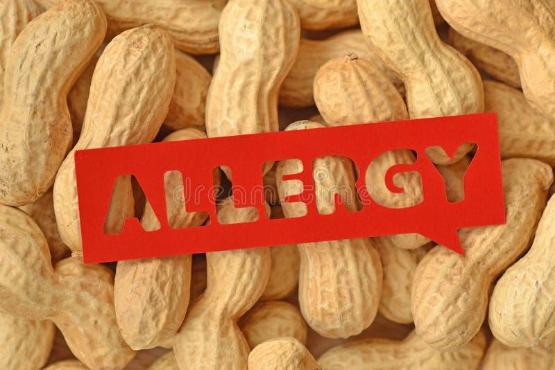 Peanut allergy concept royalty free stock photo
