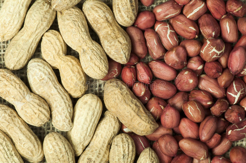 Download Closeup Peanuts On Burlap Royalty Free Stock Photography - Image: 28868857