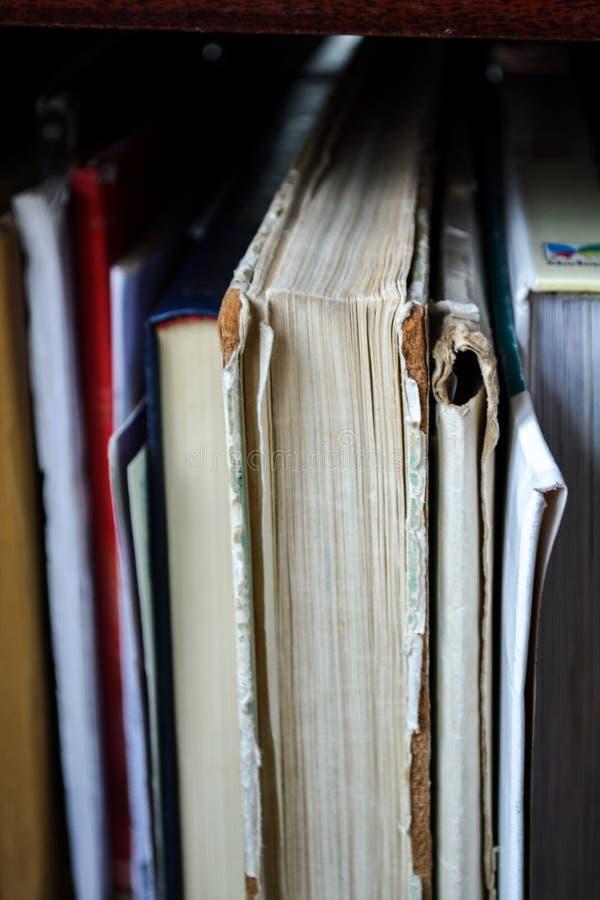 Closeup Photo of Book Filed on Shelf royalty free stock image