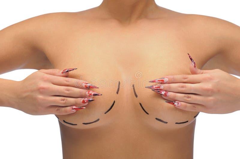 Closeup photo of a Caucasian woman s breasts