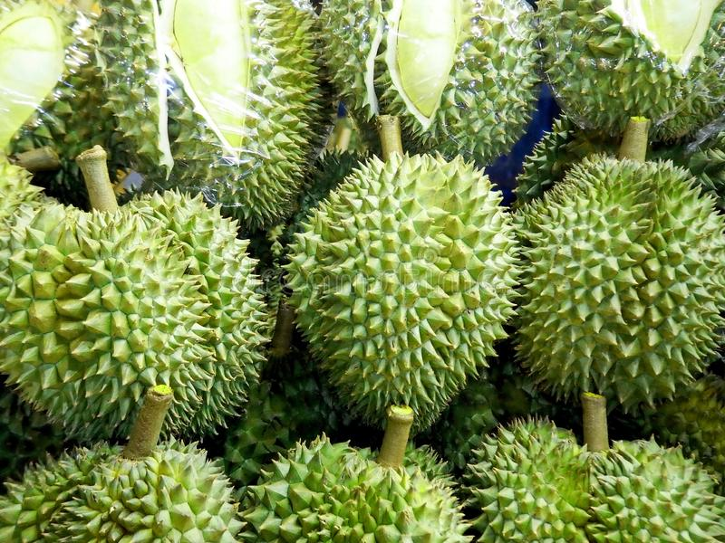 Fresh and Delicious Durians at the Fruit Market. Closeup Photo of Fresh and Delicious Durians at the Fruit Market royalty free stock image