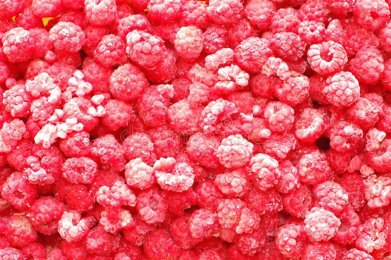 Closeup photo of frosty, frozen raspberries royalty free stock photo