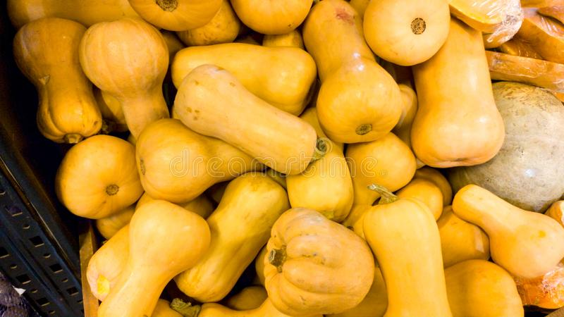 Closeup image of lots of ripe pumpkins lying on counter at grocery store. Closeup texture or pattern of fresh ripe. Closeup photo of lots of ripe pumpkins lying royalty free stock photos
