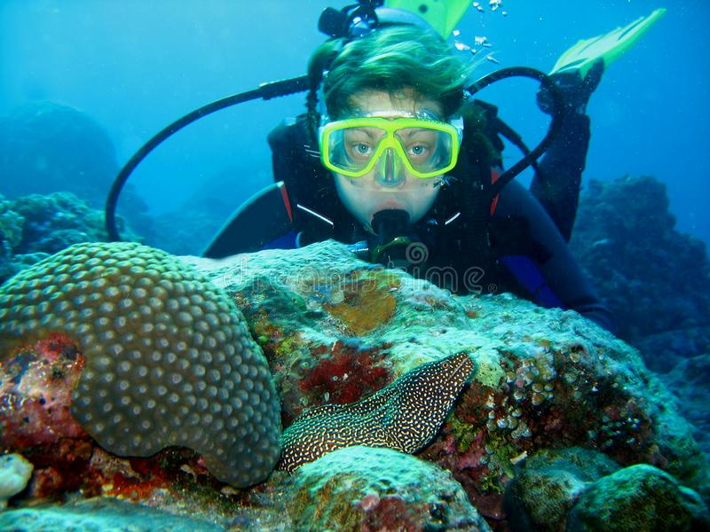 Closeup photo of a moray eels and a scuba diver. They look at each other. The diver is looking forward. The moray eel comes out from the whole royalty free stock images
