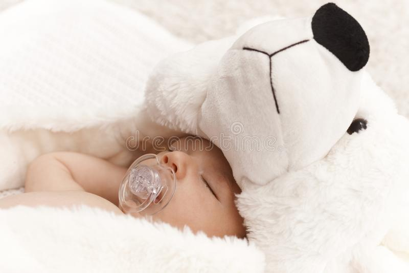 Closeup photo of sleeping baby with bear stock photography