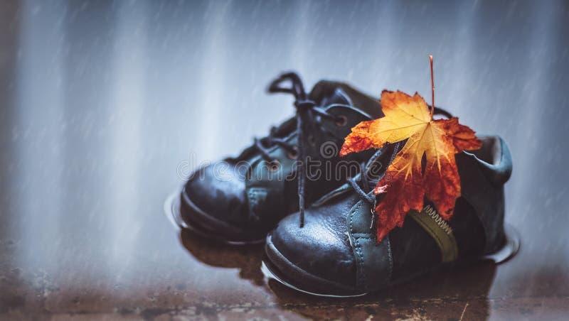 Autumn season concept royalty free stock photography