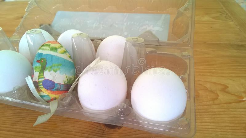 A closeup photograph of a single painted plastic Easter egg nested inside of a plastic egg carton with several real chicken eggs stock photography