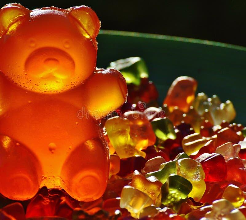 Closeup Photography Of Gummy Bears Free Public Domain Cc0 Image