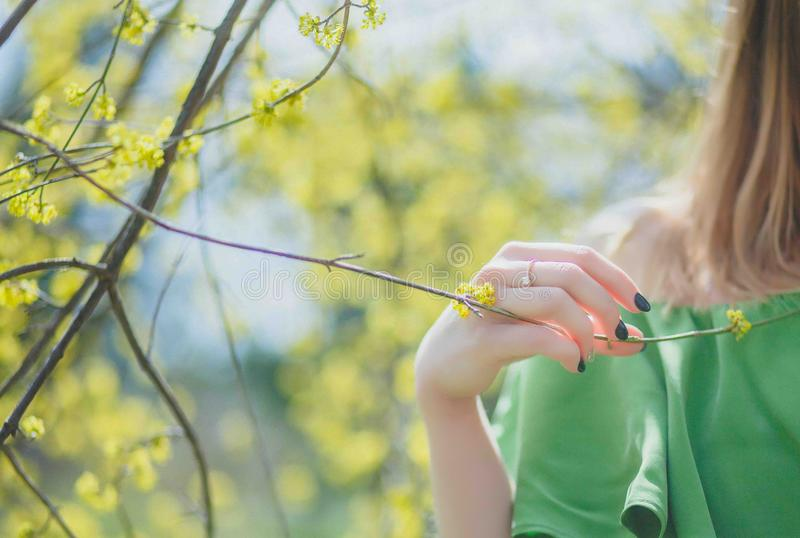 Closeup Photography of Woman Wearing Green Top Holding Leaf stock photography