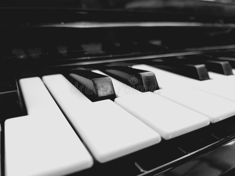 Piano keys. Playing and enjoying the piano. Closeup of piano keys. Black and white. Playing the piano. Music school royalty free stock image
