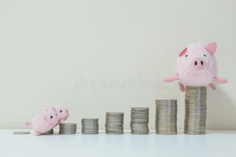 Closeup pile of coin start from low to high with pig doll on the top of coin wait three little pig walk to on desk and wall backgr. Closeup pile of coin start royalty free stock image
