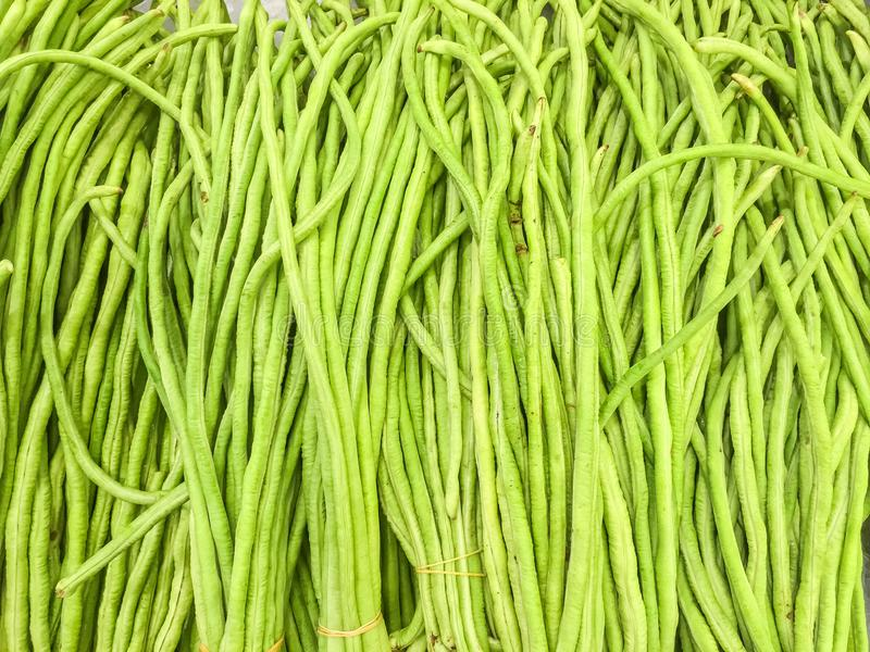 Closeup pile of fresh green yard long bean textured background stock image