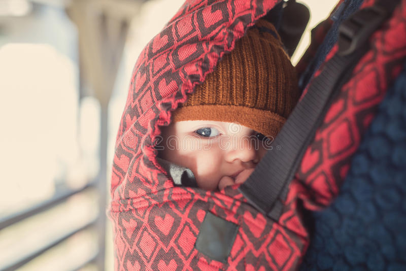 Closeup portrait of baby in a carrier stock photo