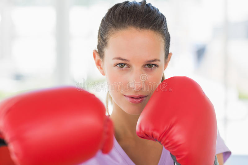 Closeup portrait of a determined female boxer royalty free stock photos