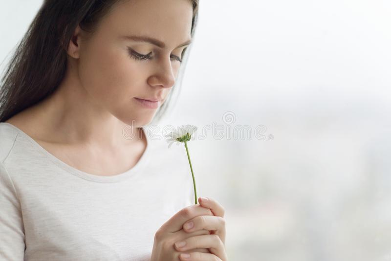 Closeup portrait of girl with chamomile flower, young woman with natural make-up smiling, background window. Concept of clear skin stock photography