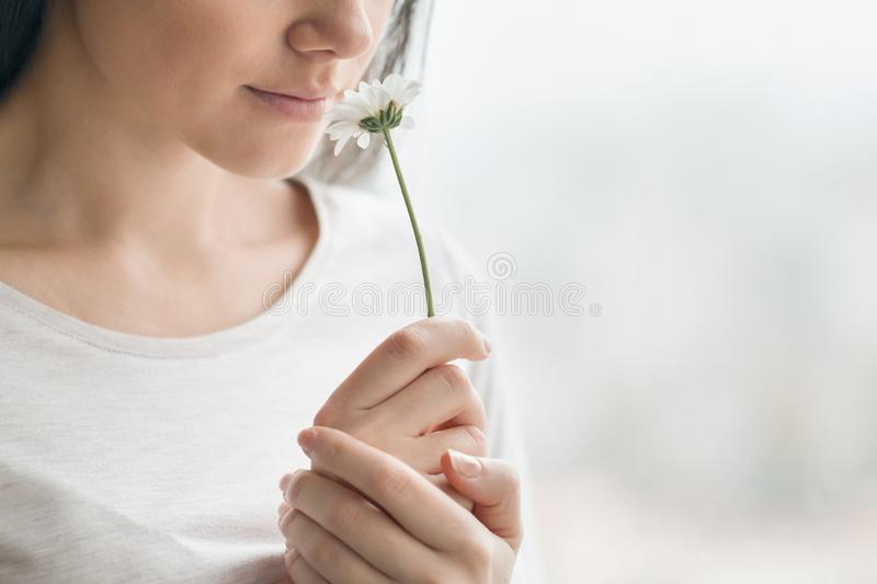 Closeup portrait of girl with chamomile flower, young woman with natural make-up smiling, background window. Concept of clear skin royalty free stock photo