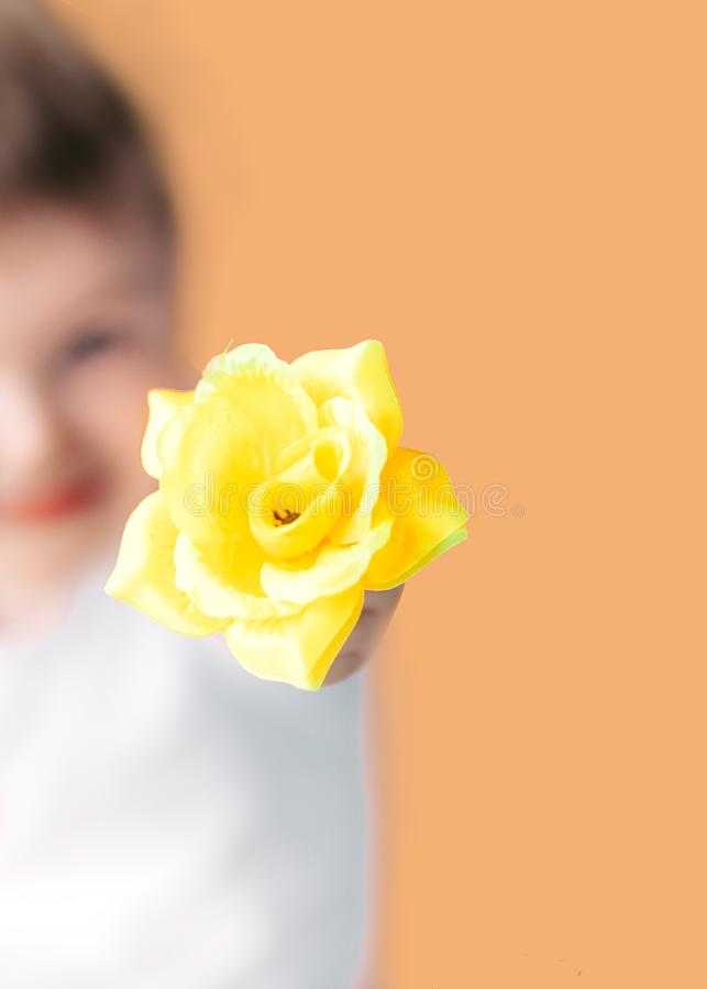Closeup portrait happy smiling boy with orange rose. Beautiful little boy toddler giving a flower Mother`s day concept. boy stock photo