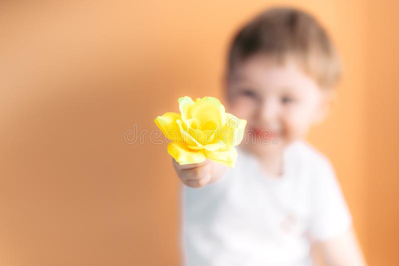 Closeup portrait happy smiling boy with orange rose. Beautiful little boy toddler giving a flower Mother`s day concept. boy stock images