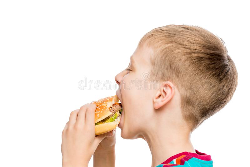 Closeup portrait of a hungry boy with a hamburger on white background royalty free stock photography