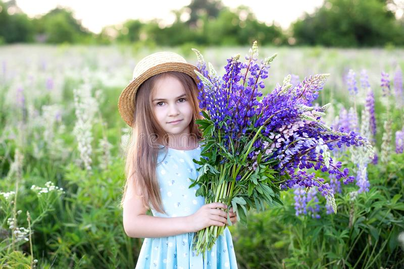 Closeup portrait of a little girl in a field of lupins. Girl holding a bouquet of purple flowers in the background of a field of l royalty free stock photos