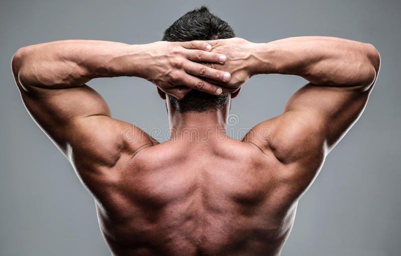 Closeup portrait of a muscular mans back stock images