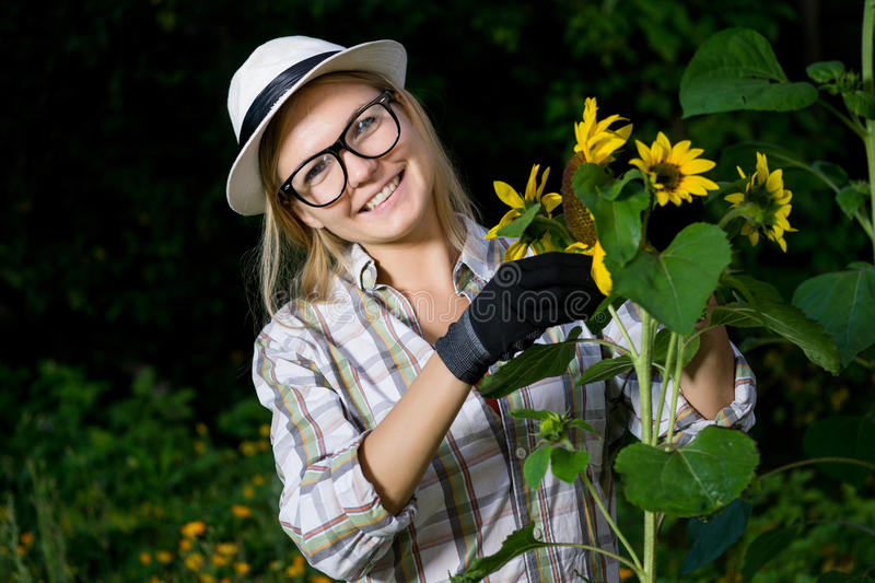 Closeup portrait of smiling woman gardener in gloves with sunflower stock photography