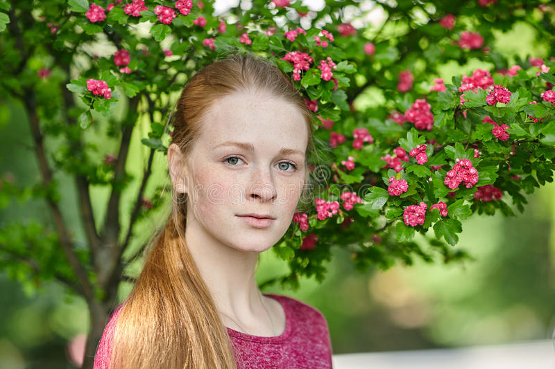 Closeup portrait of young natural beautiful redhead woman in fuchsia blouse posing against blossoming tree with blurred green foli stock images