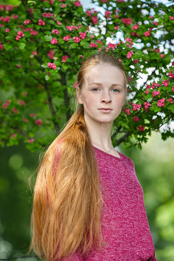 Closeup portrait of young natural beautiful redhead woman in fuchsia blouse posing against blossoming tree with blurred green foli stock photos