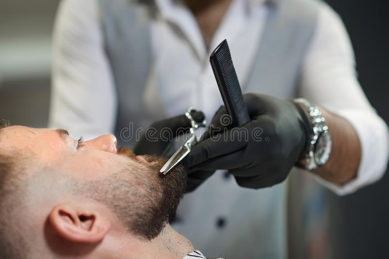 Closeup of process of cutting beard of client in barber shop. Closeup of process of cutting beard of male client in barber shop. Qualified barber in black royalty free stock image