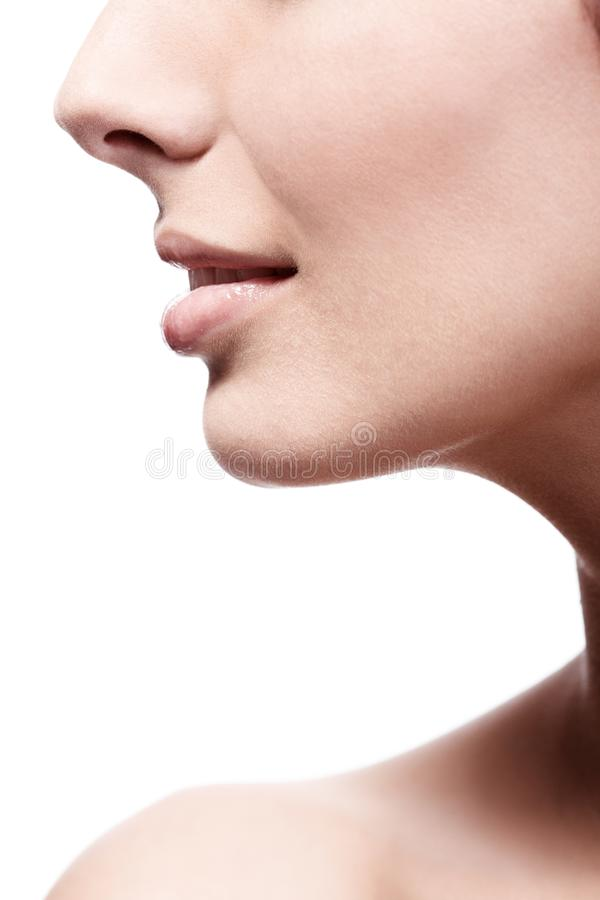 Closeup profile of female's nose and lips stock photos
