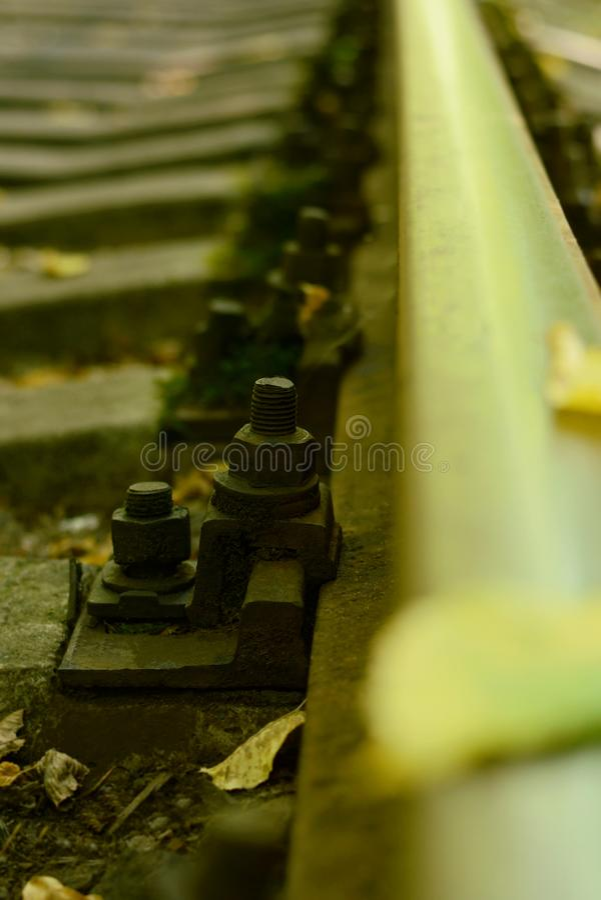 Closeup of Rail tracks with fallen autumn leafs. Rails in autumn. Autumn leaf. On train rail stock photo