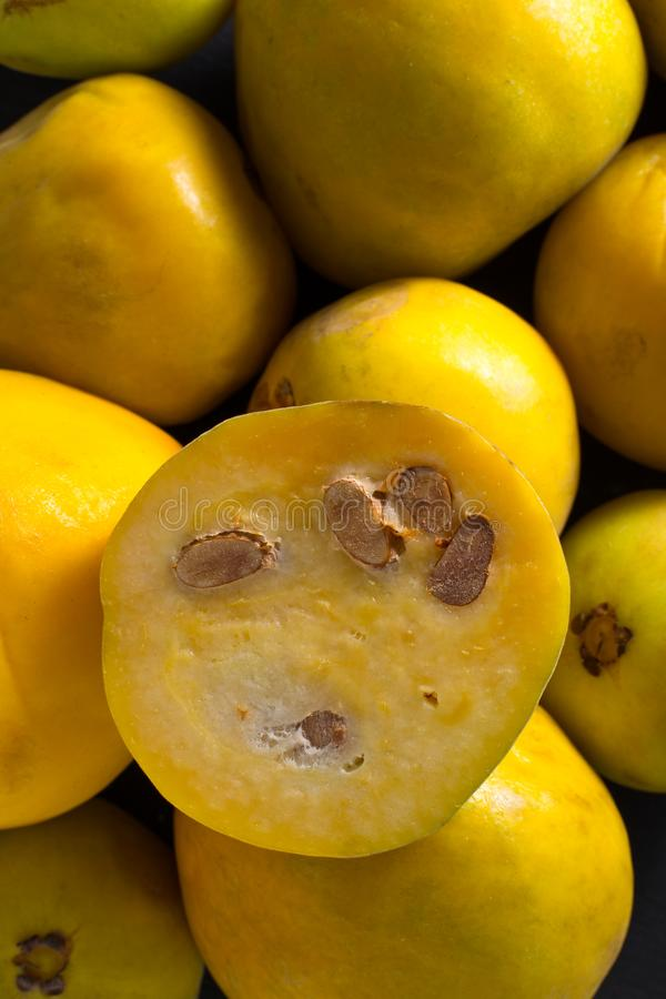 Araza fruit from the Amazon. Closeup of rare araza fruit from the Amazon area royalty free stock images