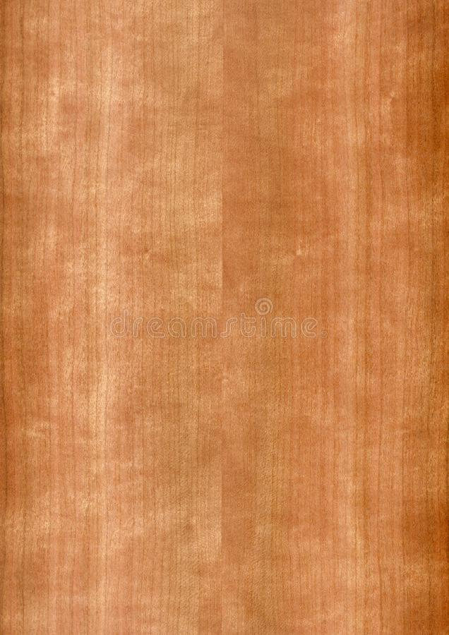 Closeup real natural wood grain of veneer background and texture, Pattern for decoration. Blank for design. Use for select material idea decorative furniture royalty free stock photos