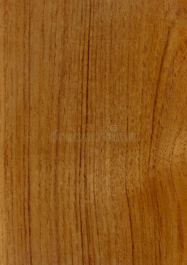 Closeup real natural wood grain of veneer background and texture, Pattern for decoration. Blank for design. Use for select material idea decorative furniture stock images