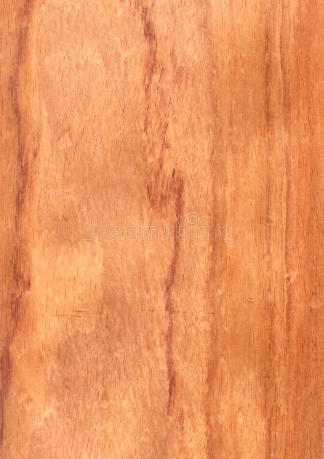 Closeup real natural wood grain of veneer background and texture, Pattern for decoration. Blank for design. Use for select material idea decorative furniture stock photo