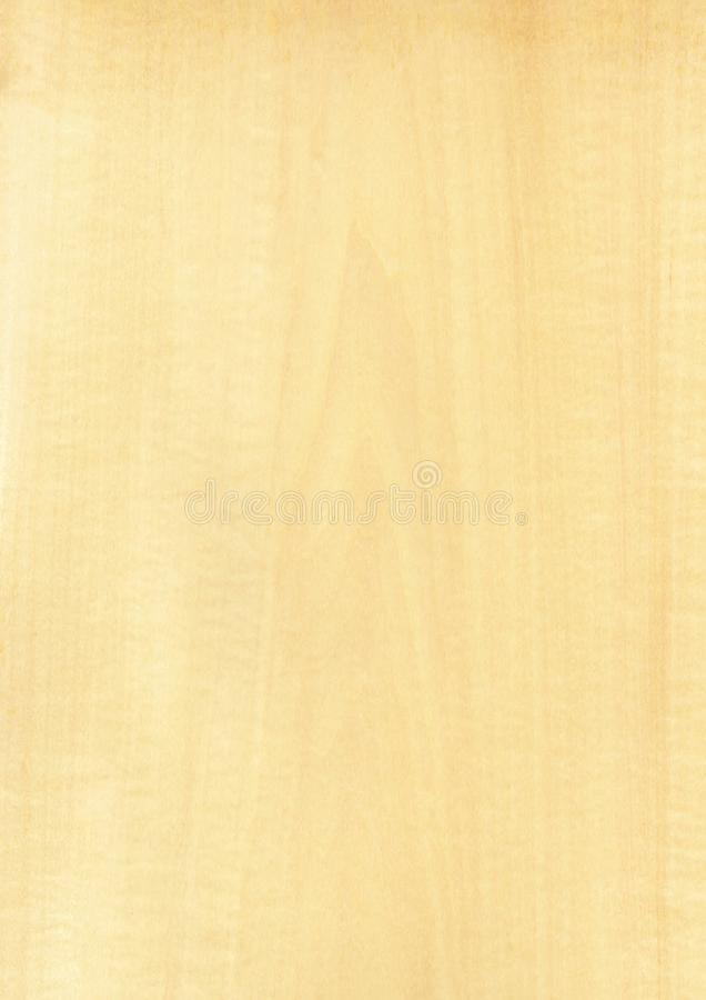 Closeup real natural wood grain of veneer background and texture, Pattern for decoration. Blank for design. Use for select material idea decorative furniture royalty free stock image