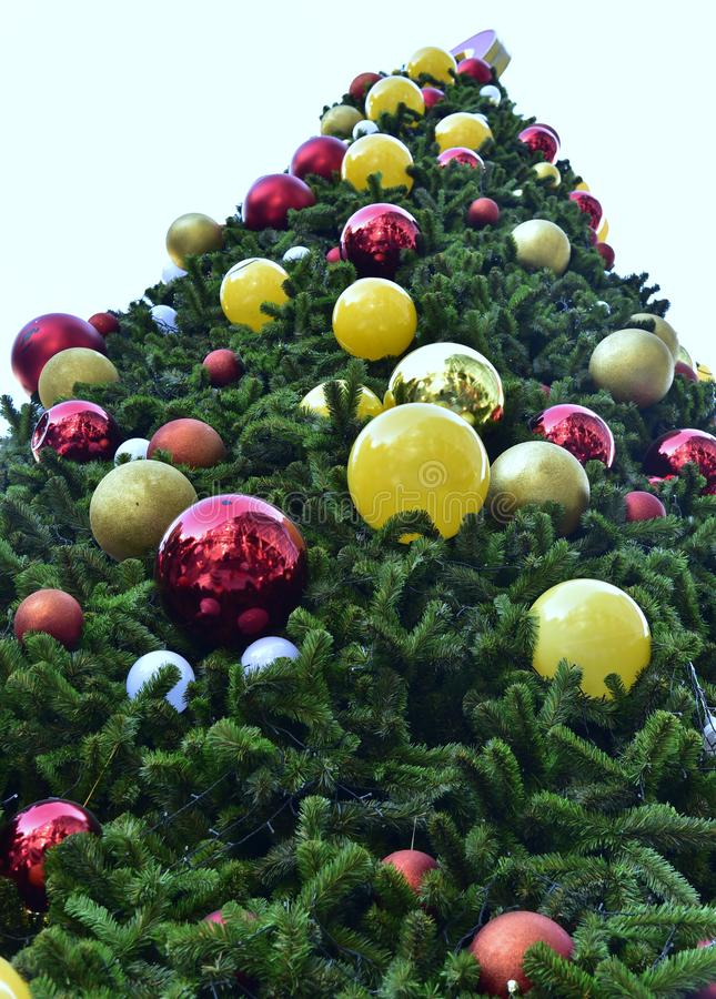 Closeup red bauble Christmas tree Gift Box balloon star stock photo