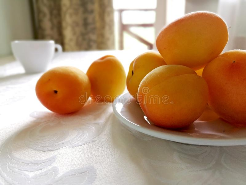 Many yellow ripe apricots on a white plate. royalty free stock images