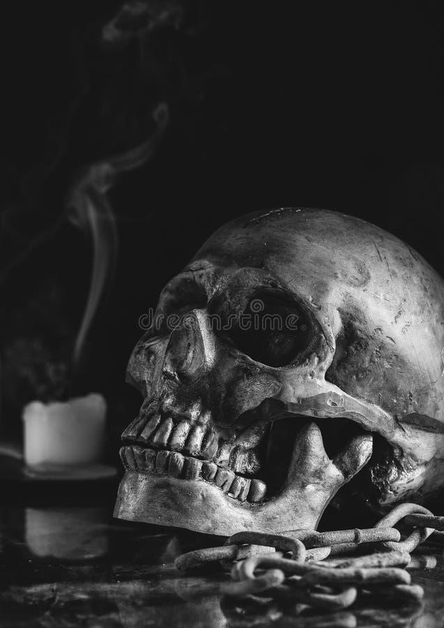 Closeup of a Scary Human Skull stock photos
