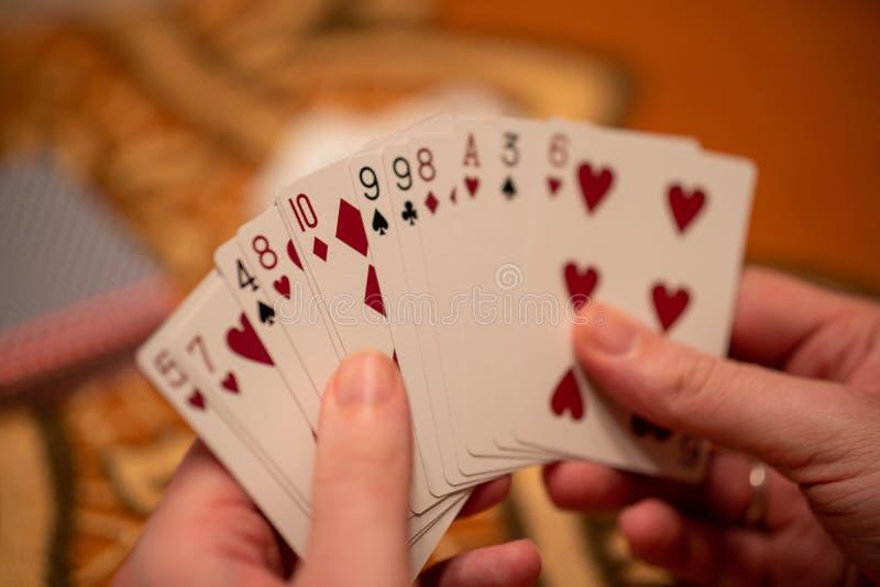 Closeup selective focus shot of a hand holding a hand of playing cards. A closeup selective focus shot of a hand holding a hand of playing cards stock photo