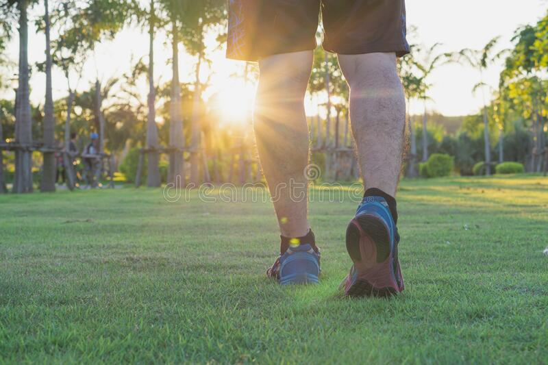 Closeup shoe. Male legs jogging and walking at the park. Sport and exercise concept. Closeup shoe. Male legs jogging and walking at park. Sport and exercise royalty free stock images