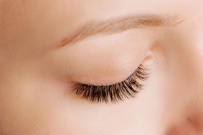 Closeup shot of female eye with day makeup stock image