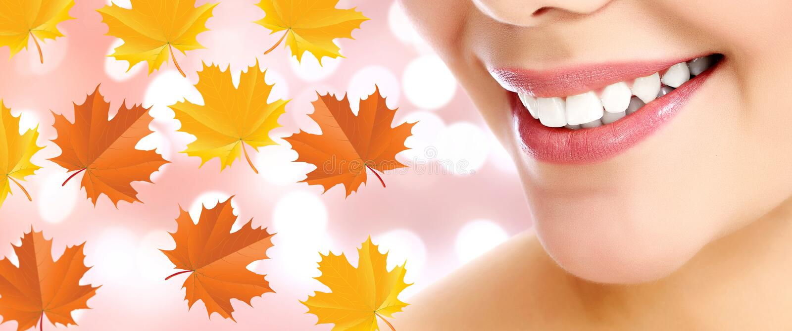 Closeup shot of female smile and maple leaves royalty free stock images